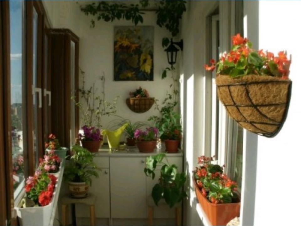 Подбираем интерьер и оформляем балкон живыми цветами.