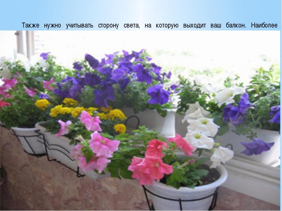 Методы оформления балконов цветами: фото и названия популярн.
