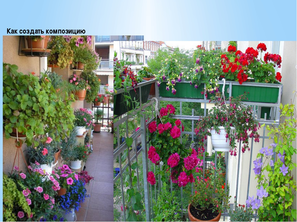 Как создать композицию Подбор ассортимента при создании цветочных композиций...