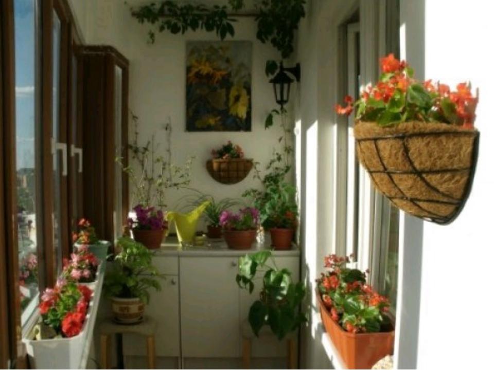 Композицию можно сделать более интересной, высадив два-три вида растений с г...