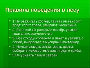 Правила поведения в лесу 1.Не разжигать костёр, так как он наносит вред: гори