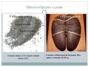 Многообразие семян Семена мака. 6-11 тысяч семян весят 3-5 г Семена сейшельск