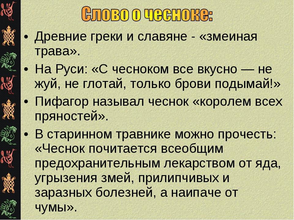 Древние греки и славяне - «змеиная трава». На Руси: «С чесноком все вкусно —...