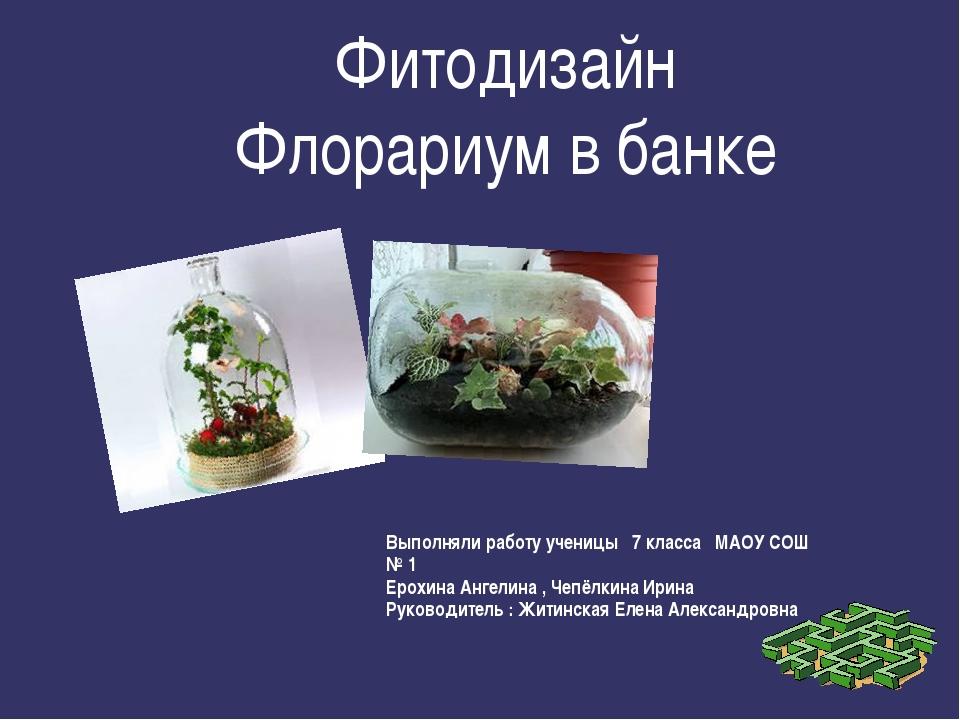Фитодизайн Флорариум в банке Выполняли работу ученицы 7 класса МАОУ СОШ № 1 Е...