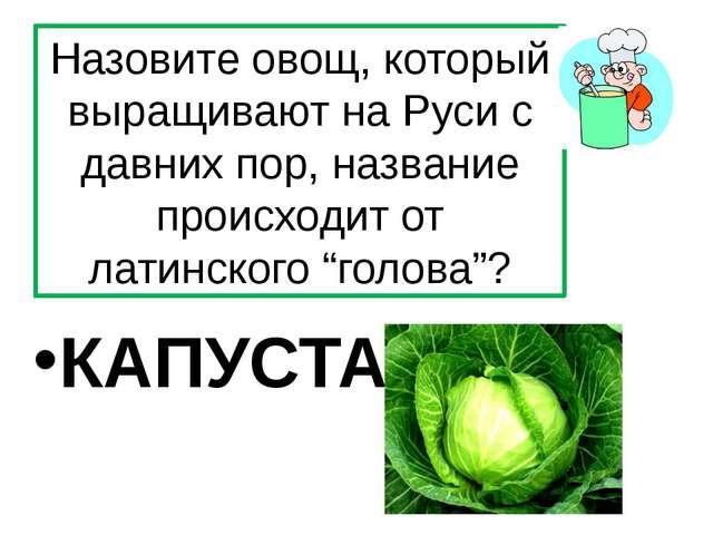 Назовите овощ, который выращивают на Руси с давних пор, название происходит о...