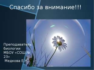 Спасибо за внимание!!! Преподаватель биологии МБОУ «СОШ № 23» Медкова Е.Н.