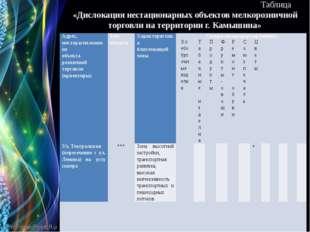 Таблица «Дислокация нестационарных объектов мелкорозничной торговли на терри