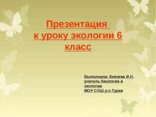 Презентация к уроку экологии 6 класс Выполнила: Князева И.Н. учитель биологии