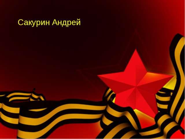 Сакурин Андрей