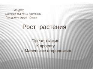 Рост растения Презентация К проекту « Маленькие огородники» МБ ДОУ «Детский с
