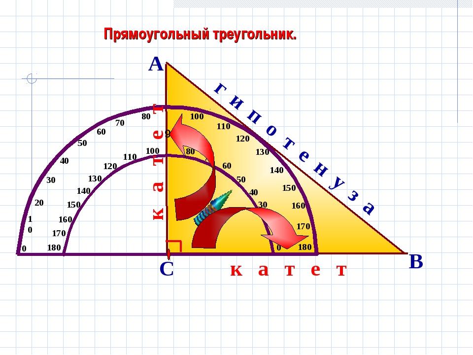 Прямоугольный треугольник. А В С г и п о т е н у з а к а т е т к а т е т