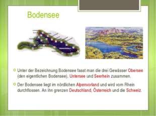 Bodensee Unter der Bezeichnung Bodensee fasst man die drei Gewässer Obersee