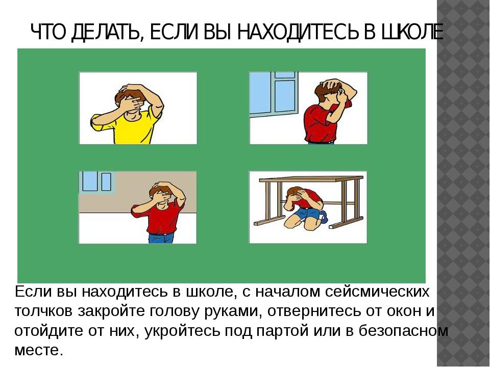 Если вы находитесь в школе, с началом сейсмических толчков закройте голову ру...