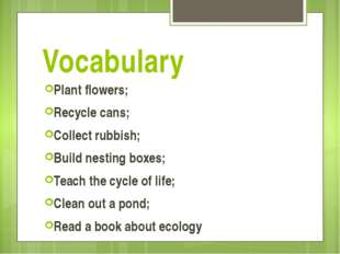Vocabulary Plant flowers; Recycle cans; Collect rubbish; Build nesting boxes;