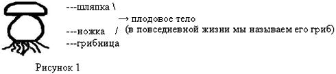 http://rudocs.exdat.com/pars_docs/tw_refs/295/294431/294431_html_1ce8cca9.png