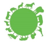 8891991-vector-green-animal-silhouettes-around-green-earth.jpg