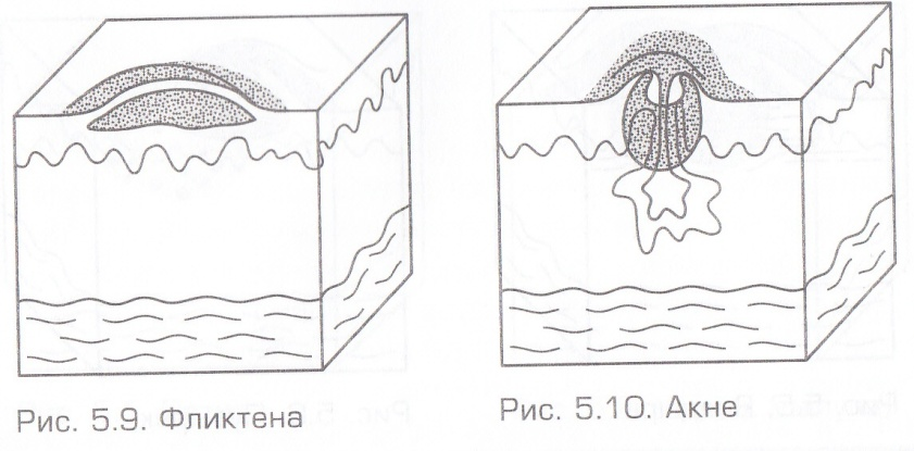 D:\Documents and Settings\Admin\Мои документы\Мои рисунки\MP Navigator EX\2013_02_13\IMG_0003.jpg