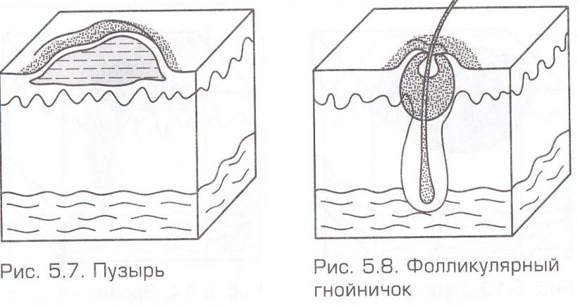 D:\Documents and Settings\Admin\Мои документы\Мои рисунки\MP Navigator EX\2013_02_13\Копия Копия Копия IMG_0001.jpg