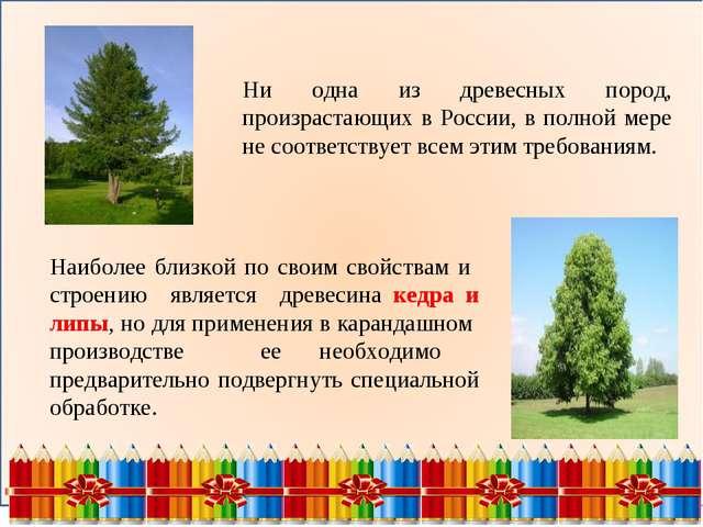 Ни одна из древесных пород, произрастающих в России, в полной мере не соотве...