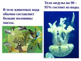 Тело медузы на 90 – 95% состоит из воды. В теле животных вода обычно составля