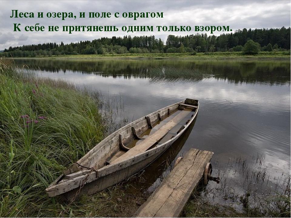 Леса и озера, и поле с оврагом К себе не притянешь одним только взором.
