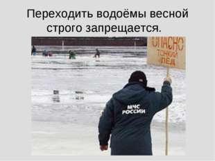 Переходить водоёмы весной строго запрещается.