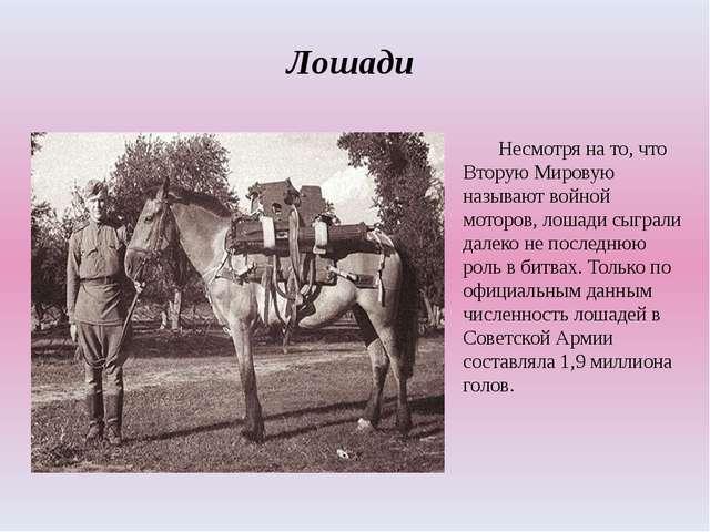 Лошади Несмотря на то, что Вторую Мировую называют войной моторов, лошади с...