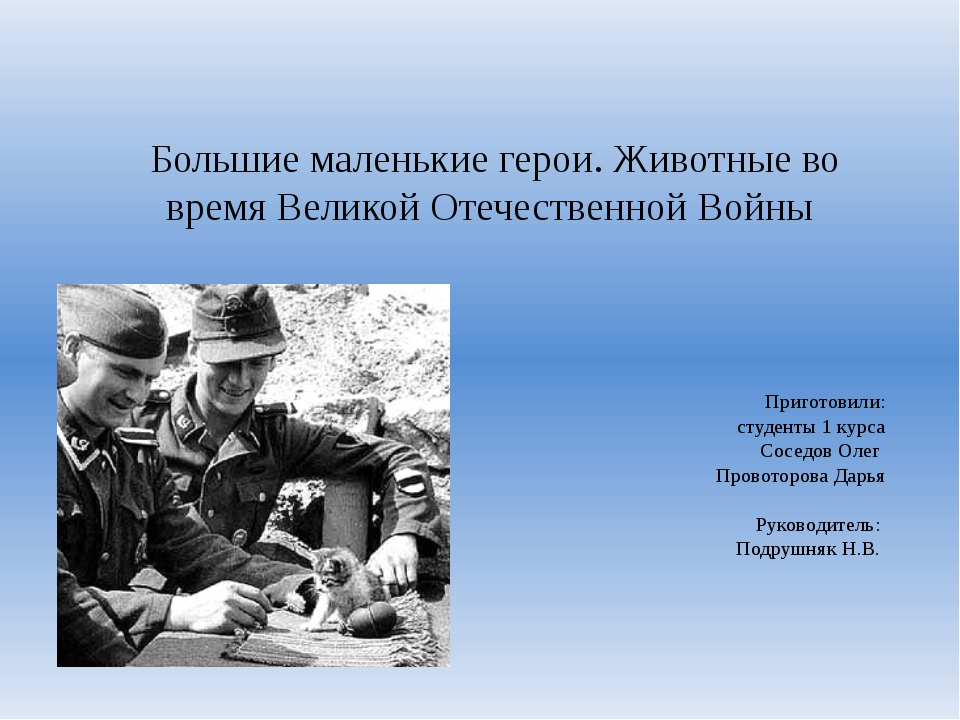 Большие маленькие герои. Животные во время Великой Отечественной Войны Приго...