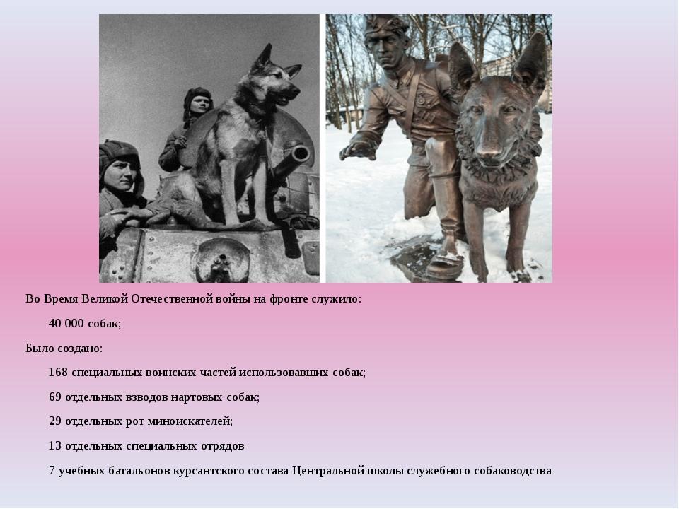 Во Время Великой Отечественной войны на фронте служило: 40000 собак; Было с...