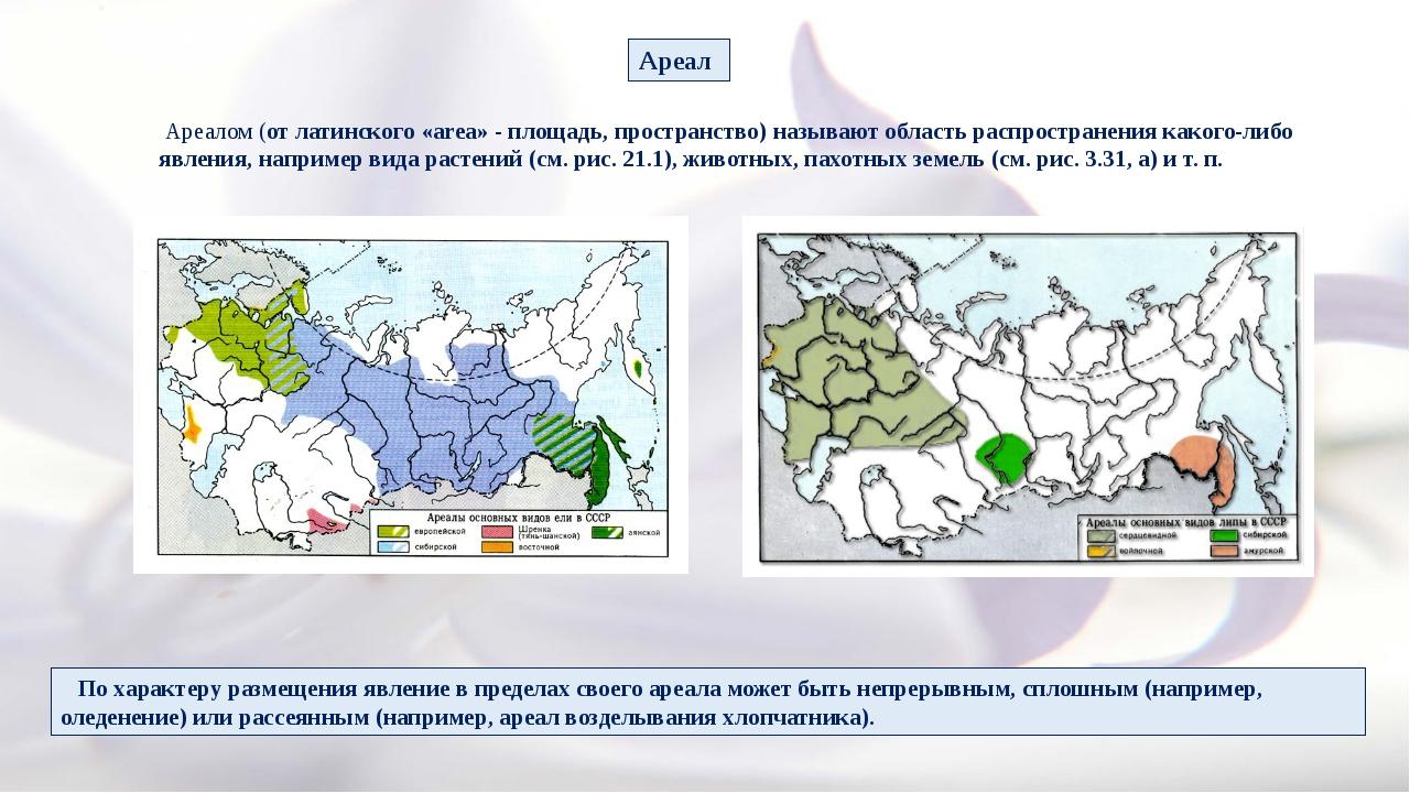 Ареалом (от латинского «area» - площадь, пространство) называют область расп...