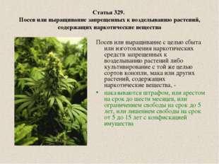 Статья 329. Посев или выращивание запрещенных к возделыванию растений, содерж