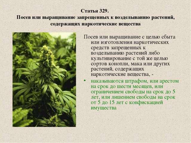 Статья 329. Посев или выращивание запрещенных к возделыванию растений, содерж...