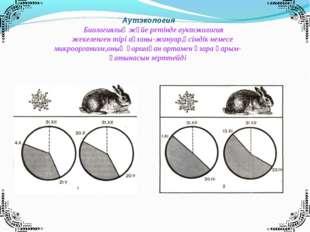Аутэкология Биологиялық жүйе ретінде ауктэкология жекеленген тірі ағзаны-жан