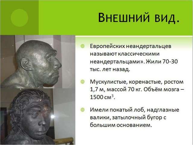Внешний вид. Европейских неандертальцев называют классическими неандертальцам...