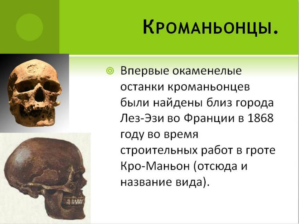 Кроманьонцы. Впервые окаменелые останки кроманьонцев были найдены близ города...
