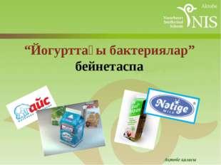 """""""Йогурттағы бактериялар"""" бейнетаспа"""