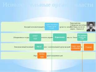 Исполнительные органы власти Председателем Совнаркома был избран В.И.Ленин, п