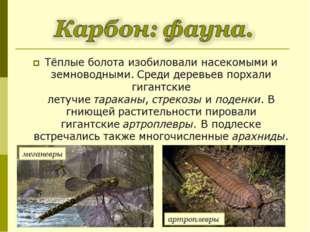 Тёплые болота изобиловали насекомыми и земноводными. Среди деревьев порхали г