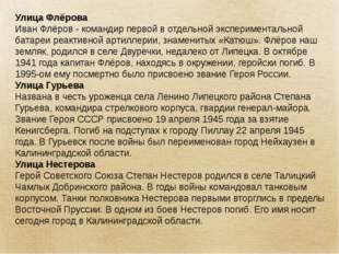 Улица Флёрова Иван Флёров - командир первой в отдельной экспериментальной бат