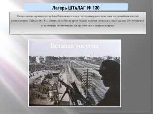 На юго-западе окраины города близ Варшавского шоссе гитлеровцы разместили оди