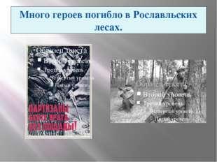 Много героев погибло в Рославльских лесах. Партизанское движение