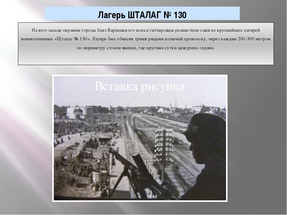 На юго-западе окраины города близ Варшавского шоссе гитлеровцы разместили оди...