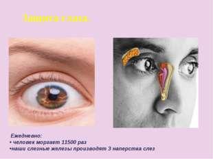 Защита глаза. Ежедневно: человек моргает 11500 раз наши слезные железы произв