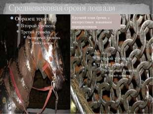 Средневековая броня лошади Крупний план брони, с интерестным кованным перепле