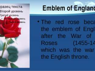 The red rose became the emblem of England after the War of the Roses (1455-14