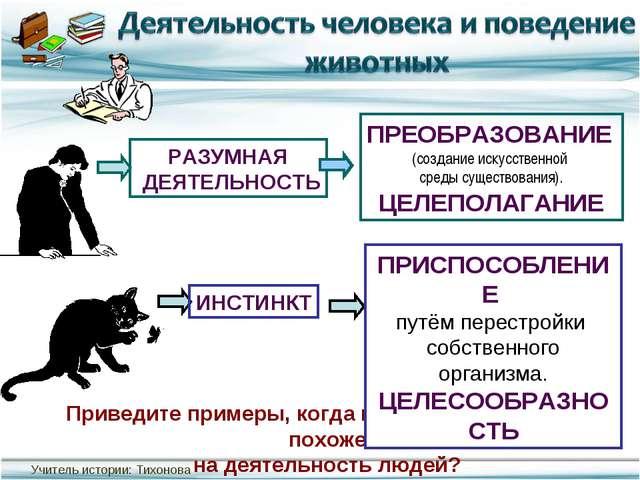 Приведите примеры, когда поведение животных похоже на деятельность людей?