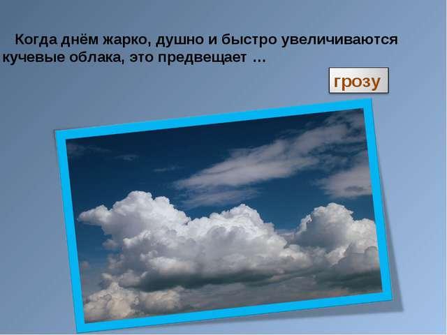 Когда днём жарко, душно и быстро увеличиваются кучевые облака, это предвещае...