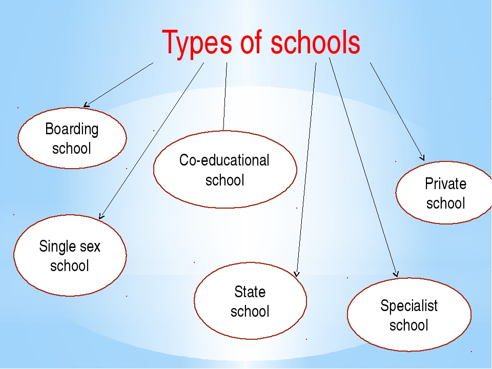 a comparison on the school system of the private and public school