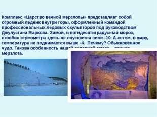 Комплекс «Царство вечной мерзлоты» представляет собой огромный ледник внутри