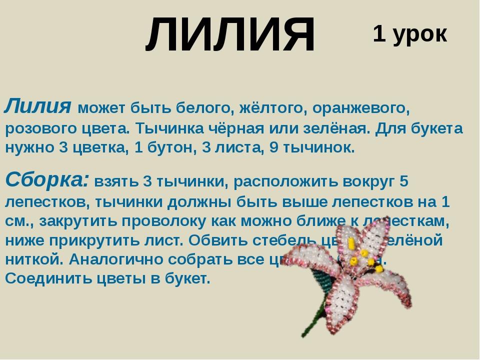 ЛИЛИЯ Лилия может быть белого, жёлтого, оранжевого, розового цвета. Тычинка ч...
